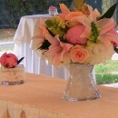 bujori-roz-pe-terasa